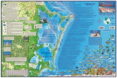Caribbean Map, Cancun Guide and Dive, laminated, 2008 by Frankos Maps Ltd.