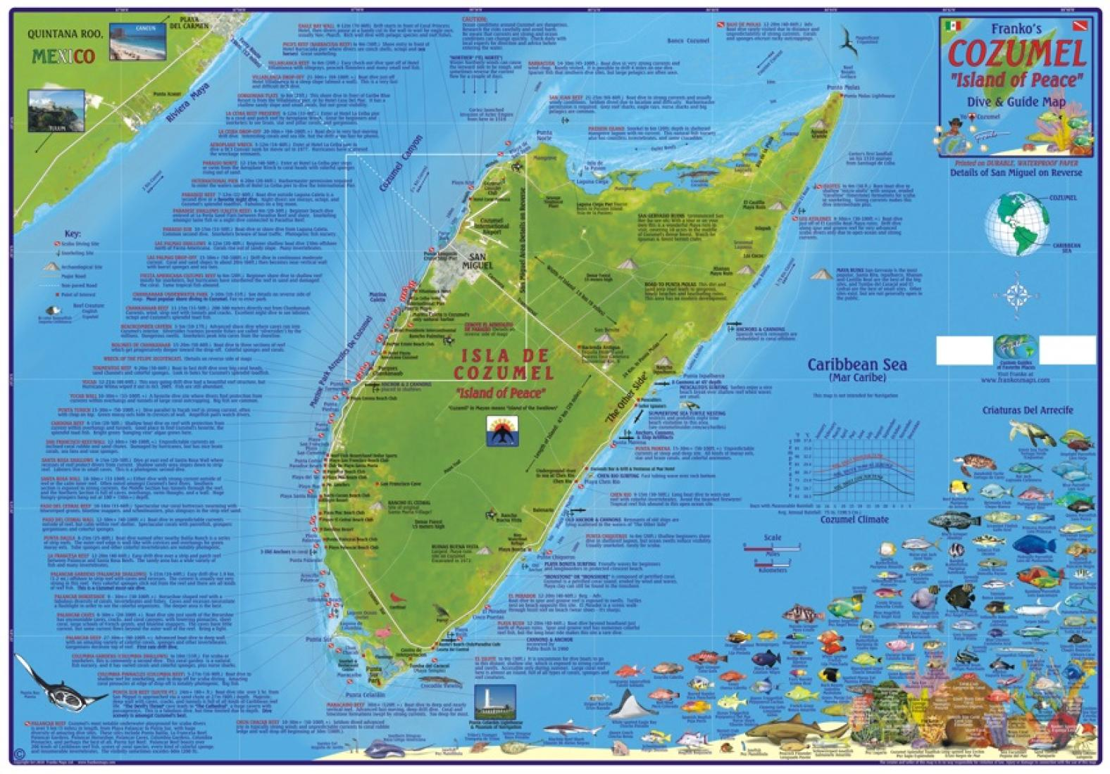 Caribbean Map, Cozumel Dive and Guide, laminated, 2010 by Frankos Maps Ltd.