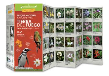 Tierra del Fuego National Park & Beagle Channel Field Guide (Flora & Fauna) by 49southphoto