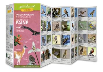 Torres del Paine National Park Field Guide (Flora & Fauna) by 49southphoto
