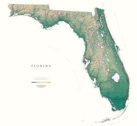 Florida, Physical Wall Map by Raven Press
