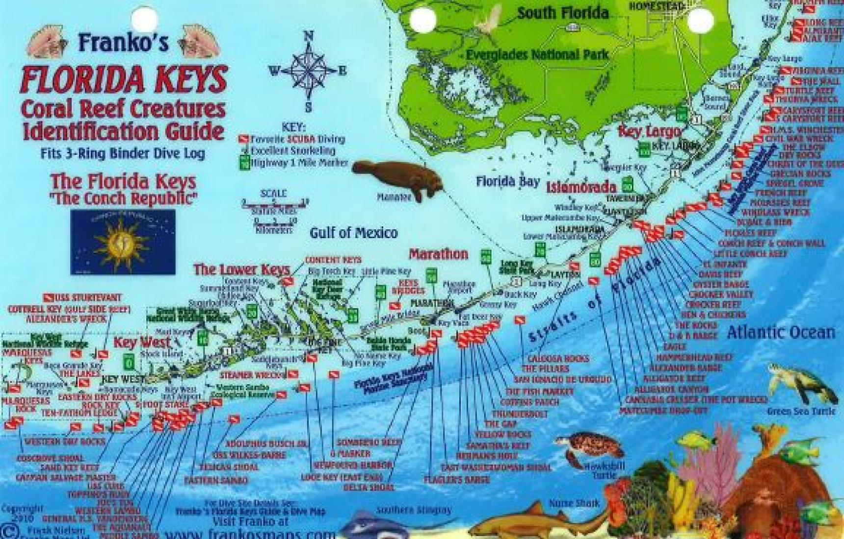 Florida Keys Maps.Florida Keys Fish Id Card By Frankos Maps Ltd
