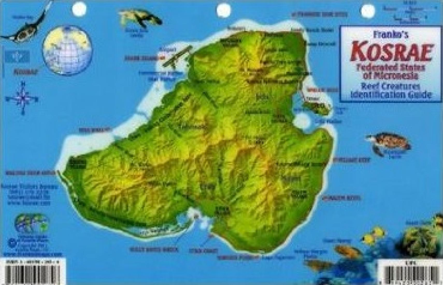 Kosrae federated states of micronesia reef creatures kosrae federated states of micronesia reef creatures identification guide by frankos maps ltd publicscrutiny Images