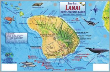Guide to Lanai, Reef Creatures by Frankos Maps Ltd.