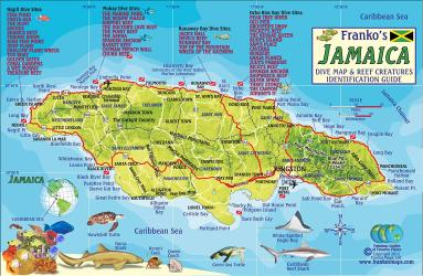 Franko's Jamaica Dive Map & Reef Creatures Identification Guide by Frankos Maps Ltd.
