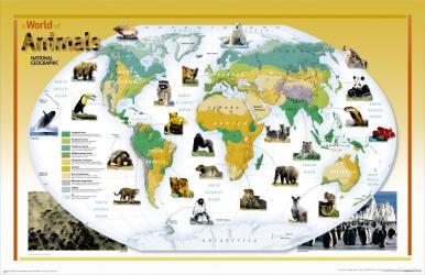 2004 World of Animals Map by National Geographic Maps