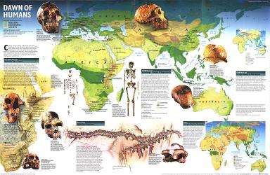 1997 Dawn of Humans Map by National Geographic Maps