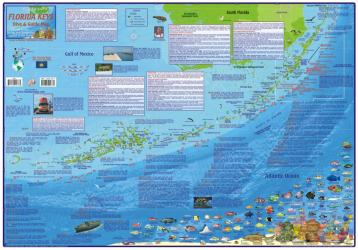 Florida Map, Florida Keys Guide and Dive,laminated, 2010 by Frankos Maps Ltd.