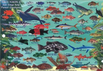 California Fish Card, HMSC Yukon 2005 by Frankos Maps Ltd.