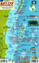 Caribbean Fish Card, Belize 2010 by Frankos Maps Ltd.