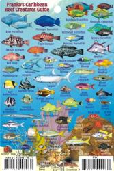 Caribbean Fish Card, Caribbean Mini Fish Card 2009 by Frankos Maps Ltd.