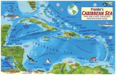 Caribbean Fish Card, Caribbean Sea 2011 by Frankos Maps Ltd.