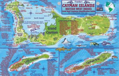 Caribbean Fish Card, Cayman Islands 2010 by Frankos Maps Ltd.