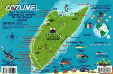 Caribbean Fish Card, Cozumel 2011 by Frankos Maps Ltd.