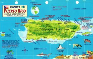 Caribbean Fish Card, Puerto Rico 2011 by Frankos Maps Ltd.