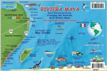 Caribbean Fish Card, Riviera Maya 2008 by Frankos Maps Ltd.