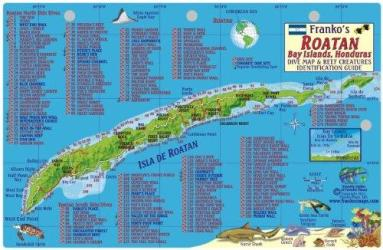 Caribbean Fish Card, Roatan 2011 by Frankos Maps Ltd.