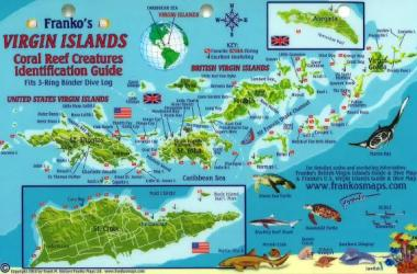 Caribbean Fish Card, Virgin Islands Reef Creatures 2010 by Frankos Maps Ltd.
