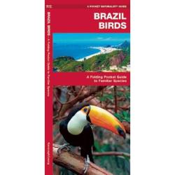 Brazil Birds: A Folding Pocket Guide to Familiar Species by Waterford Press