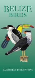Belize Birds by Rainforest Publications