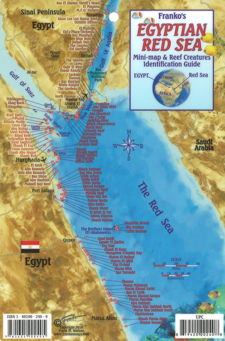 Egyptian red sea mini map and reef creatures identification guide by egyptian red sea mini map and reef creatures identification guide by frankos maps ltd gumiabroncs Image collections