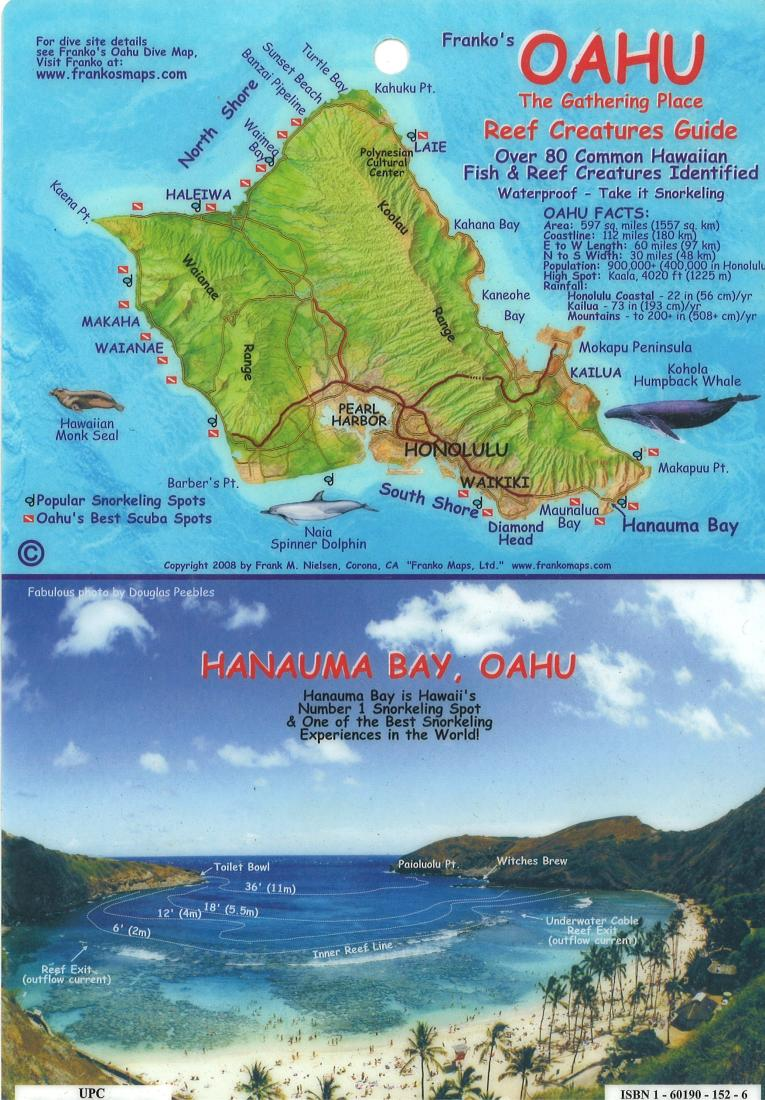 Oahu the gathering place reef creatures guide by frankos for Fishing spots oahu