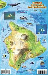 Hawaii, The Big Island, Reef Creatures Guide by Frankos Maps Ltd.