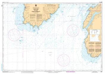CAPE PINE TO/AU CAPE ST. MARY'S (4842) by Canadian Hydrographic Service