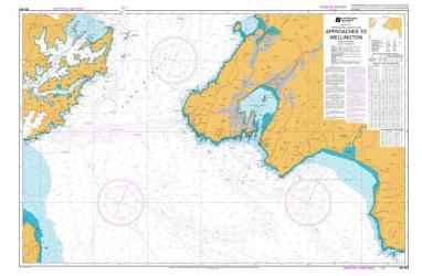 APPROACHES TO WELLINGTON (463) by Land Information New Zealand (LINZ)