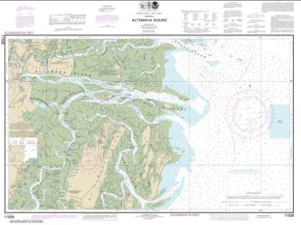 Altamaha Sound (11508-22) by NOAA