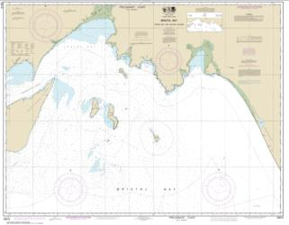 Bristol Bay-Togiak Bay and Walrus Islands (16315-10) by NOAA